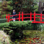 The Irish National Stud Farm & Japanese Gardens