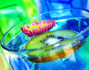 Blue Kiwi Drink / Photographer, D. Sharon Pruitt