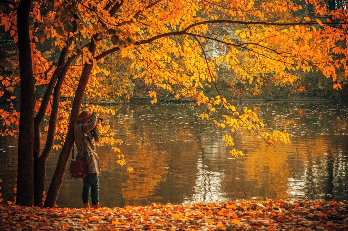 Woman photographing Fall foilage / Unsplash.com CC0 License