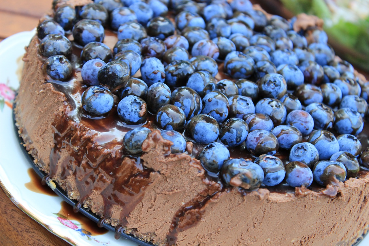 Chocolate Cheesecake with blueberry topping / artij CC0