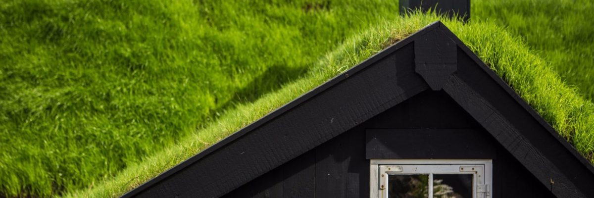 Roofs with grass in the Faroe Islands / Deposit Photos
