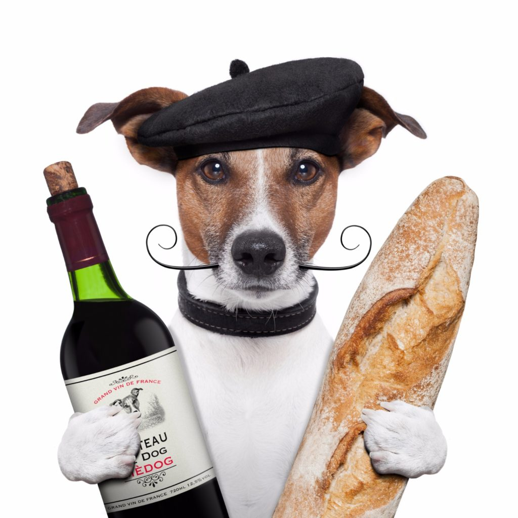 Dog dressed as chef holding French wine and a baguette / Image: Deposit Photos
