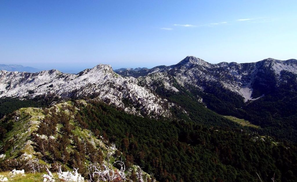 North side of Orjen in the Dinarides mountains / Pavle Cikovac CC BY-SA 3.